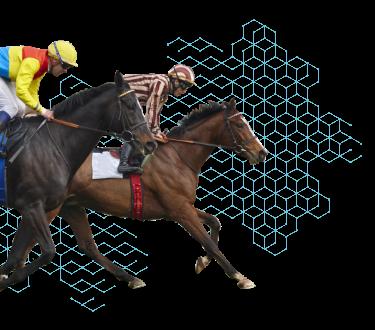 Sanbiotec - Pruebas genéticas para caballos